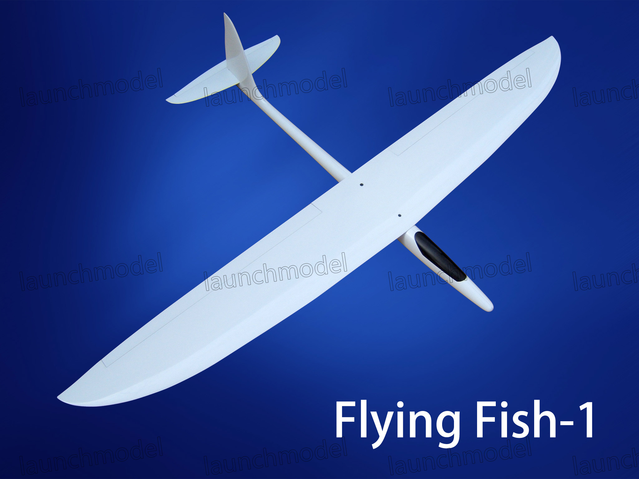 Flying fish 1 zhengzhou lanqi aviation equipment for Flying fish company